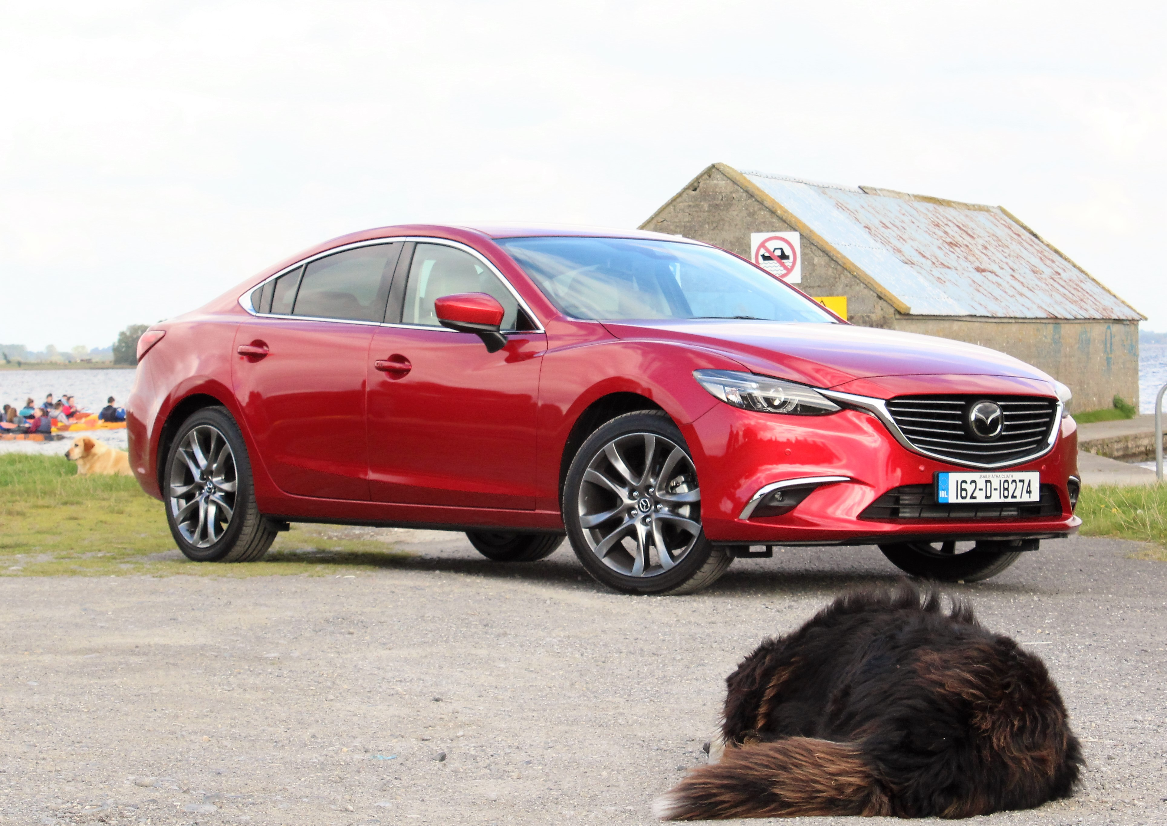 dogs-and-mazda-6