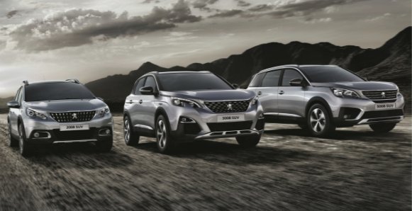 Peugeot Records Strong 2018 Performance In Irish New Car Market   Rev.ie